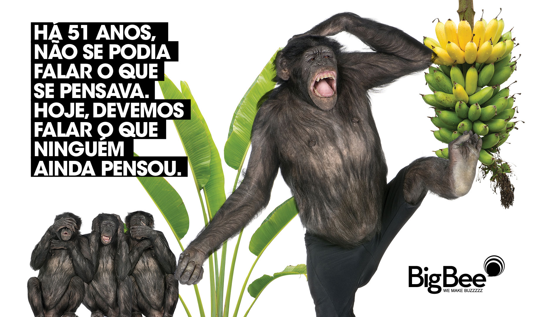 post_macaco